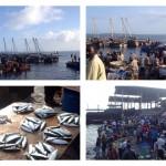 AFRIKA - SANSIBAR - Fishmarket Stonetown